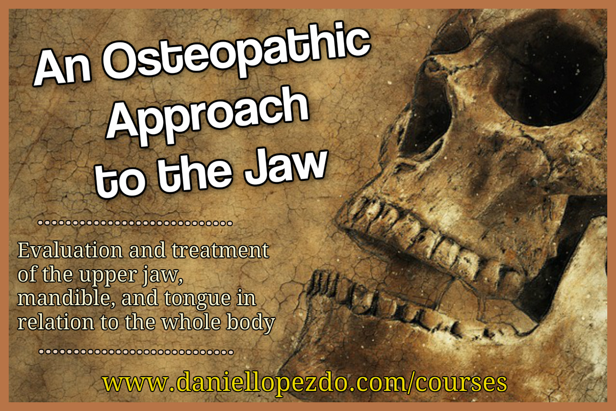 An Osteopathic Approach to the Jaw
